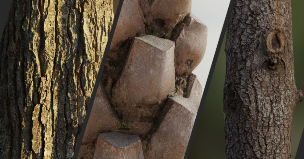 8K Scanned Tree Texture Pack by James Candy