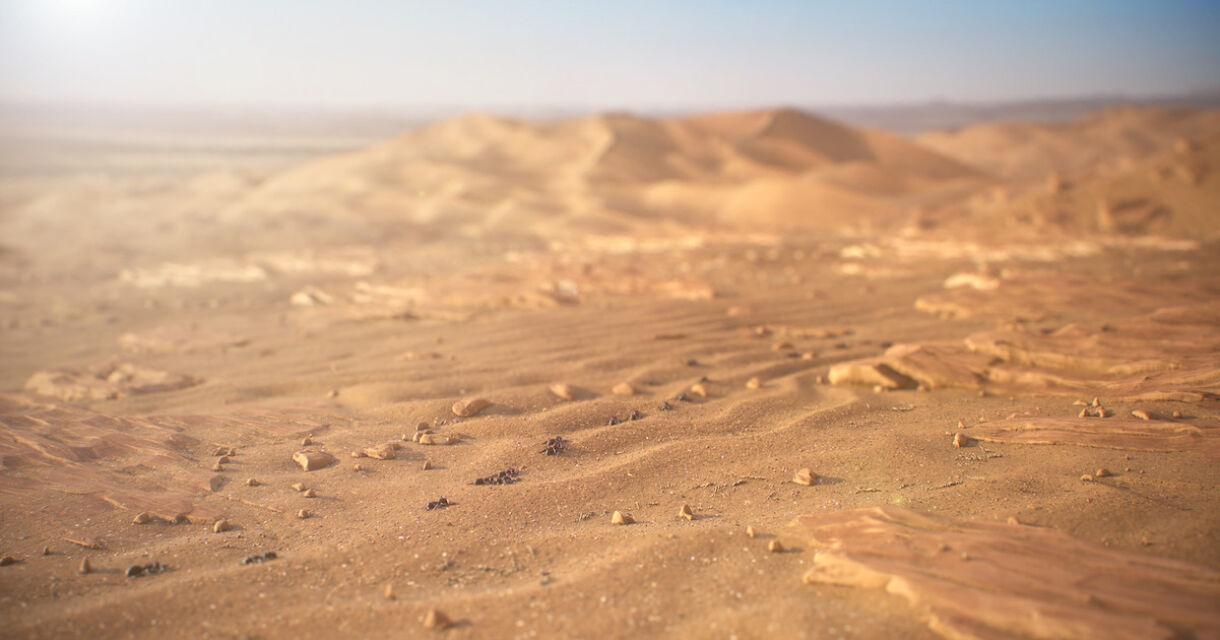 Creating Sand Rocks in Substance Designer