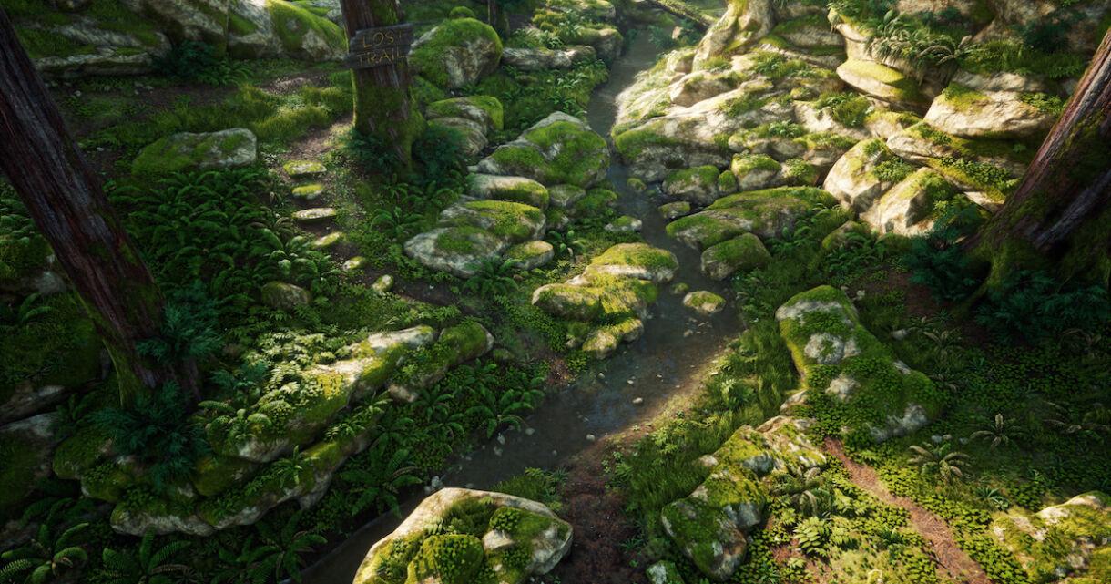 Vegetation Production in Environment Design