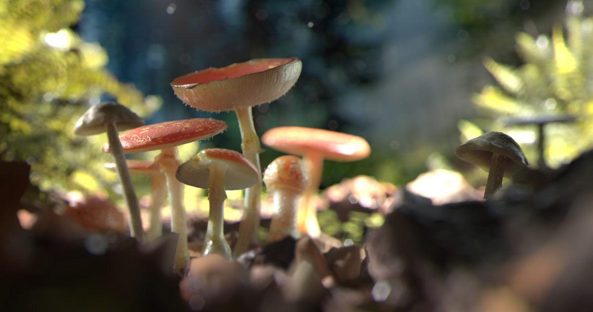 Creating Forbidden Mushrooms with Megascans and Maya