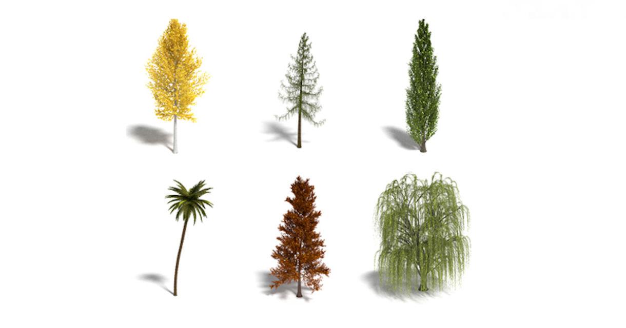 Procedural Generation of Tree Models in Blender
