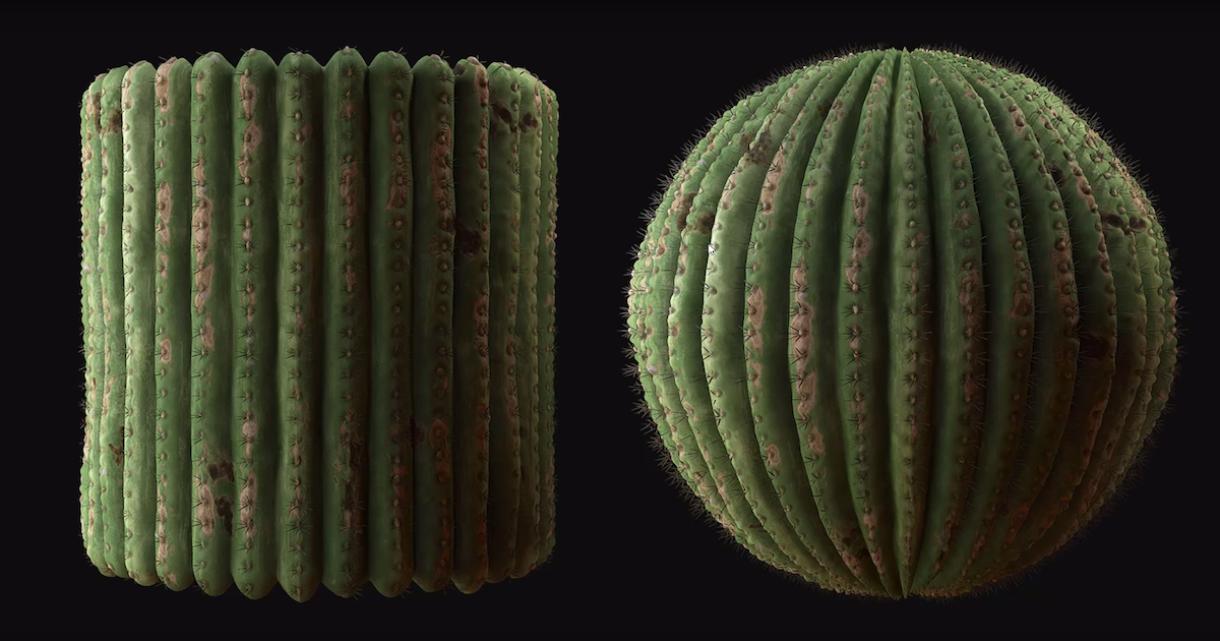 Cactus Material Breakdown