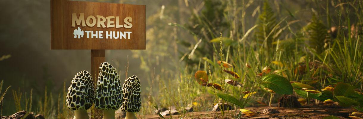 Morels: The Hunt Game Production