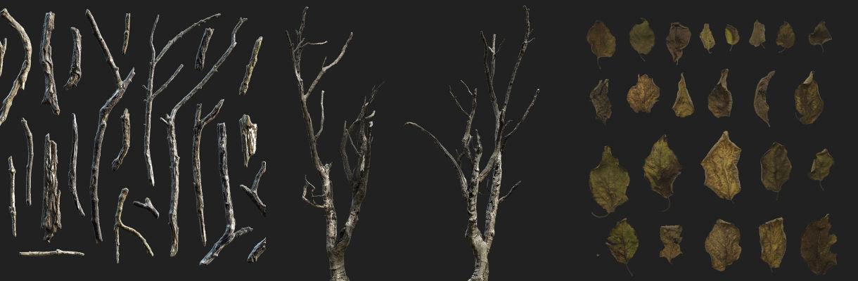 Megascans Digest: Dried Vegetation