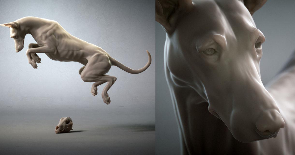 CGMA Student Project: Canine Anatomy Study